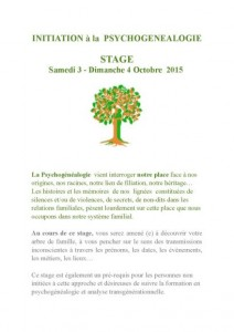 stage-decouverte-toulouse